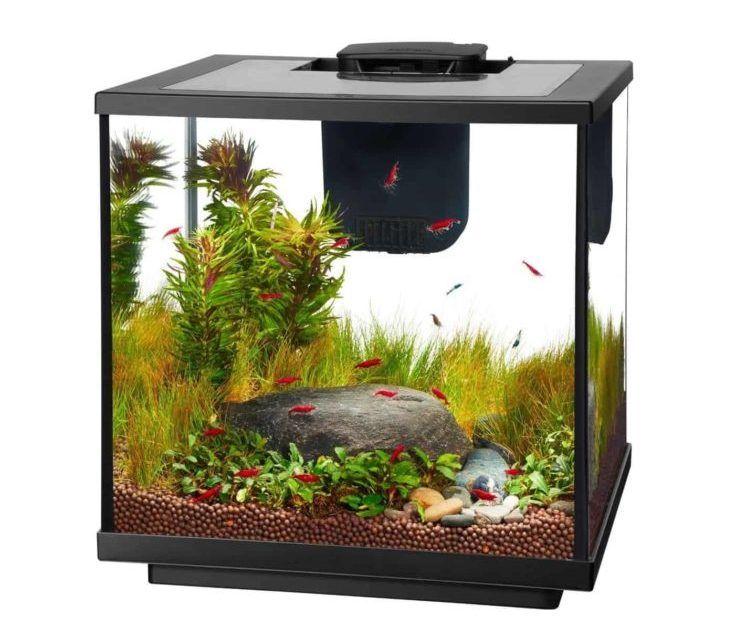 Aqueon LED Kit de acuario de camarones de 7.5 galones