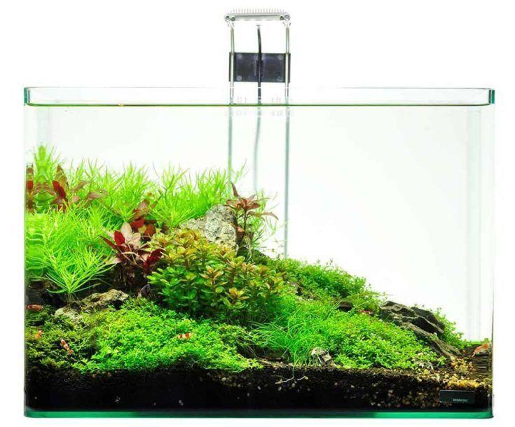 Dennerle Scapers Tank Kit de acuario de 10 galones con lámpara LED